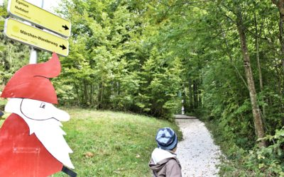 Märchenwald am Attersee