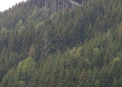 Wipfelwanderweg Rachau (6)