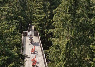 Wipfelwanderweg Rachau (9)