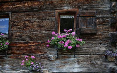Wanderung zum Almgasthaus Hiasl Zirbenhütte
