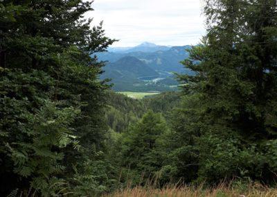 Tolles Panorama ins steirische Land