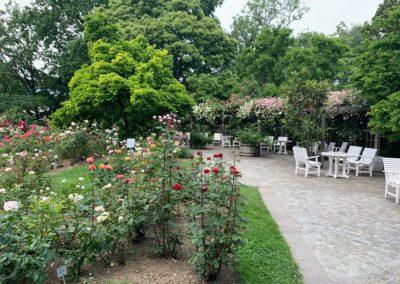 Sitzmöglichkeiten im Botanischen Garten