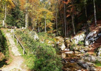 Wolfsschlucht Bad Kreuzen (3)