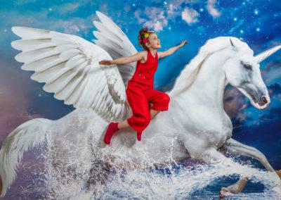 3DPicArt-Museum_Pegasus