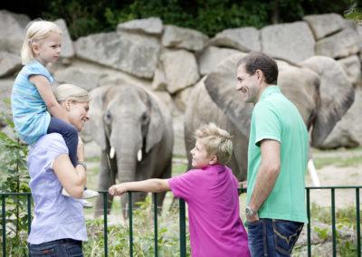 Der Tiergarten Schönbrunn ist ein super Ausflugsziel für Familien