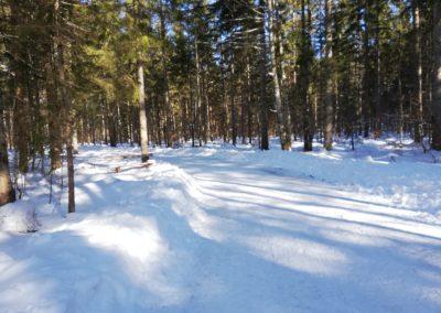 Der Schiederweiher in Hinterstoder im Winter