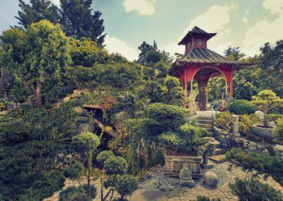 Der Asiagarten