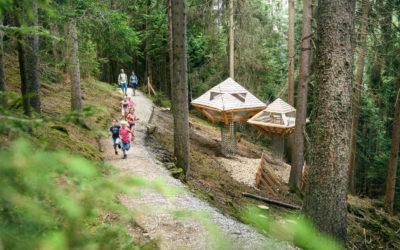 Ein Baumhausweg für Groß und Klein