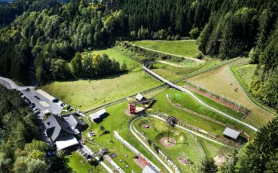 Sommerrodlbahn Koglhof